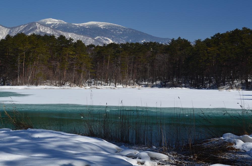 Benten-numa :snow thawing