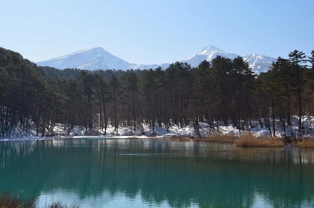 瑠璃沼:早春の写真