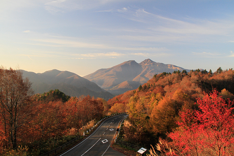 Beautiful autumn leaves around Bandai-Azuma roadway.