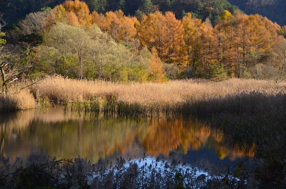 秋元湖の画像