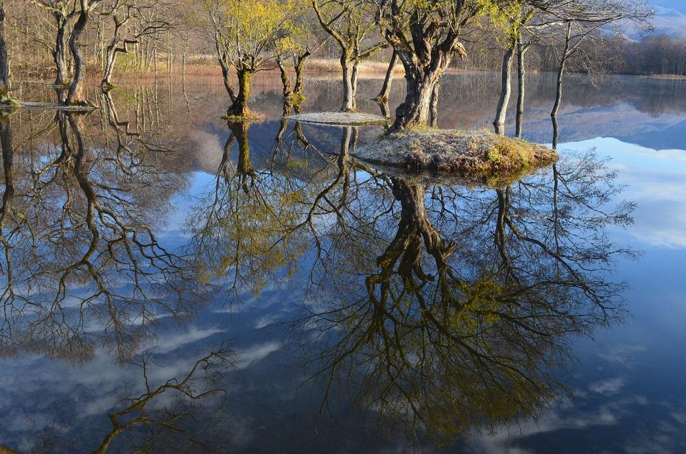 小野川湖の画像