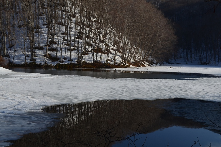 曲沢沼の画像3