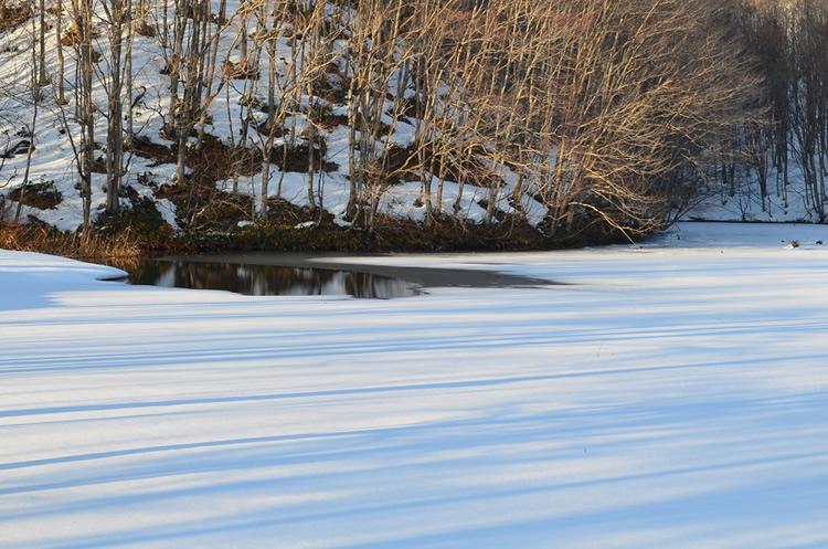 曲沢沼の画像4