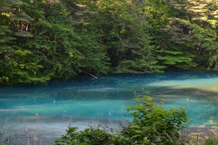 五色沼湖沼群 – 裏磐梯観光協会