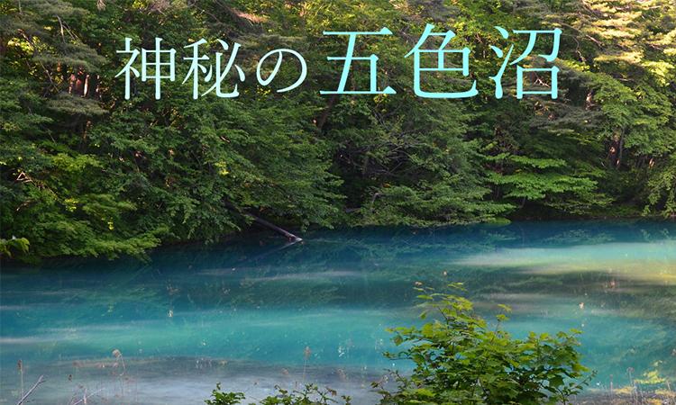 神秘の五色沼